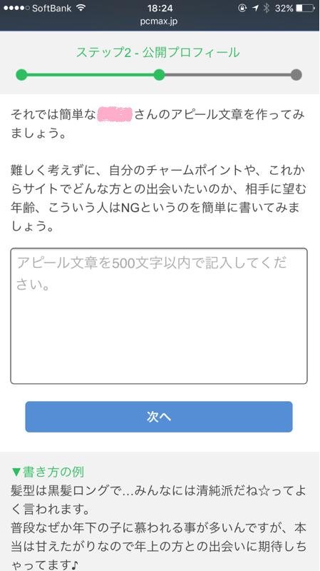 PCMAX登録方法アピール記入画面
